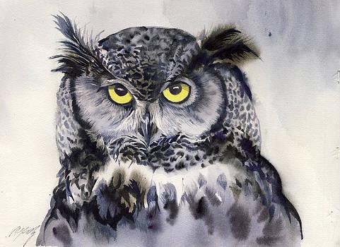 Alfred Ng - grey owl