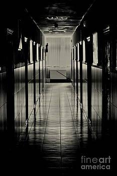 Hall of Lost Steps by Bajan Sorin