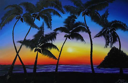 Hawaiian Sunset 2 by Portland Art Creations