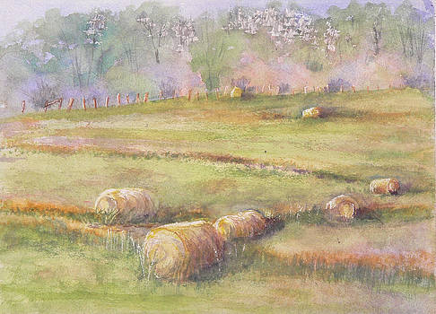 Hay Feilds by Mary Levingston