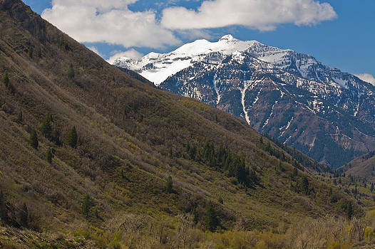 Rocky Mountains by Pro Shutterblade