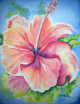 Hibiscus by Sandra Lett
