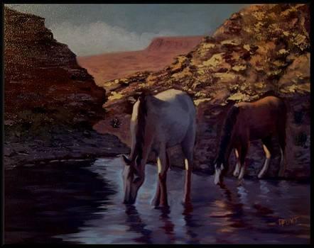 Hidden Water by Darrell Flint
