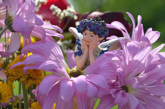 Hiding in the Flowers 2 Woodland Fairies by Linda Rae Cuthbertson