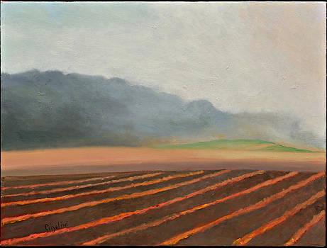 Hill Overlooking the Farm by Gloria Cigolini-DePietro
