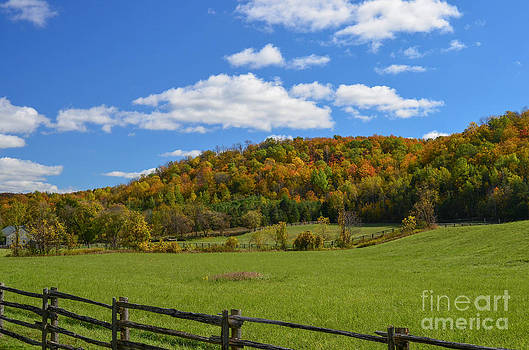Hockley Valley by Katherine Townsend
