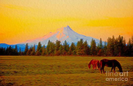 Horses by Nur Roy