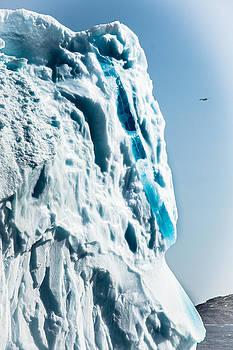 Ice XXIX by David Pinsent
