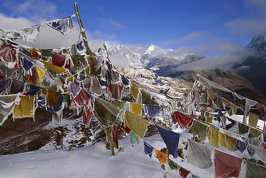 Colin Monteath - Icy Prayer Flags Himalaya