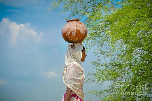 India by Ricardo Lisboa