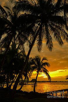 Oscar Gutierrez - Isla Colon Sunset