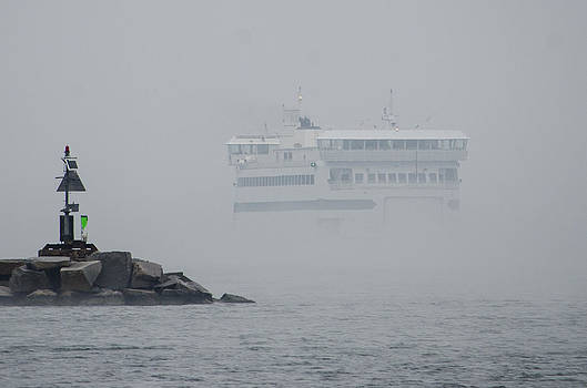 Island Home in Fog by Steve Myrick