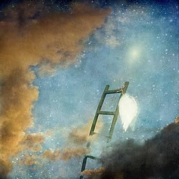 Jacob's Ladder by Sonya Kanelstrand