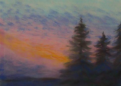 1 Jan 00 by Sherri Anderson