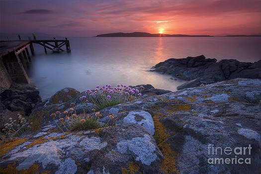Jetty Sunset by Fiona Messenger