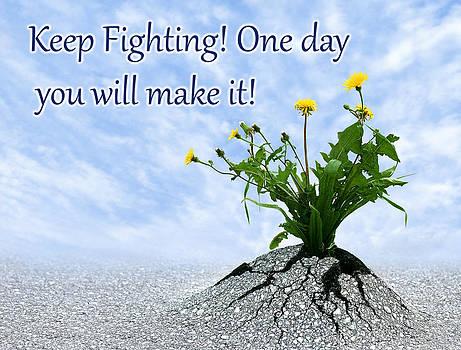 Dreamland Media - Keep Fighting