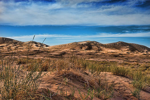 Kelso dunes in Mojave National Monument by Kim M Smith