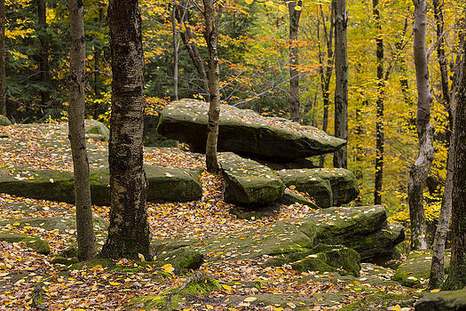 Kendall Ledges  by Tim Fitzwater