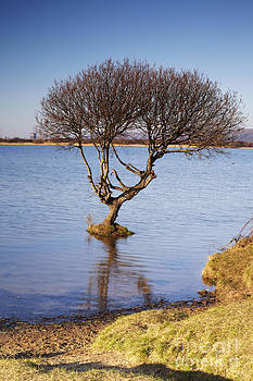 Kenfig Pool by Premierlight Images