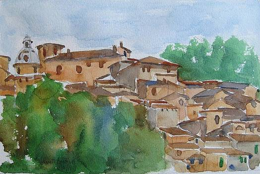 Italian hillside village by Janet Butler