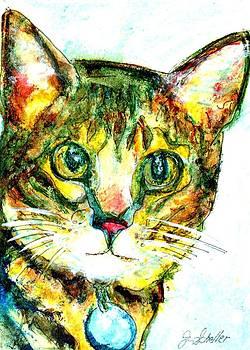 Kitty by Jodie  Scheller