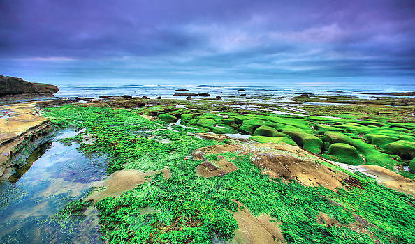 La Jolla Greens by Robert  Aycock