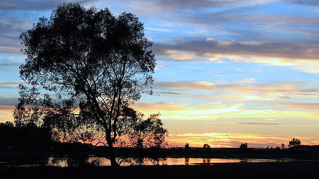 Lagoon Sunset by Jan Cipolla