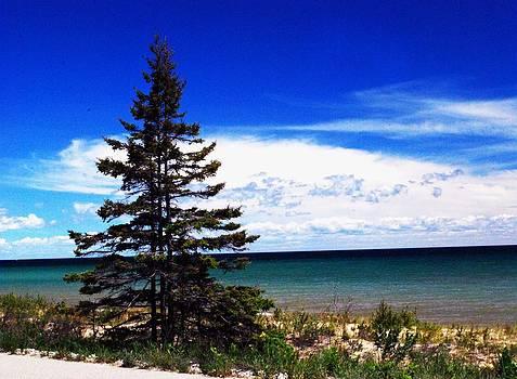 Gary Wonning - Lake Huron