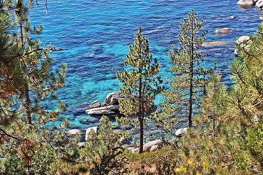 Lake Tahoe Shoreline by Jane Girardot