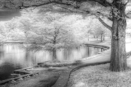 Lakeside #2 by Jay Swisher