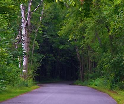 Lane Through the Presqu'ile Woods by Christopher Grove