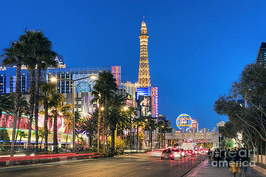David Zanzinger - Las Vegas Strip Hotel and Casinos Nevada