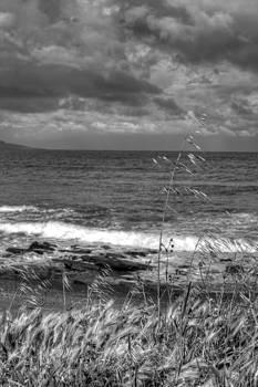 Fizzy Image - latchi beach cyprus