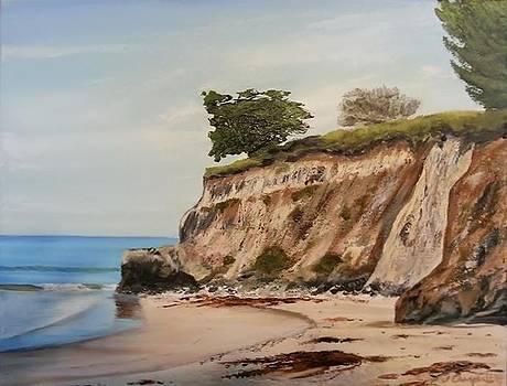 Ledbetter Point Santa Barbara by Jeffrey Campbell