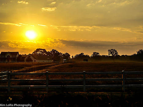 Life on the farm by Kim Loftis