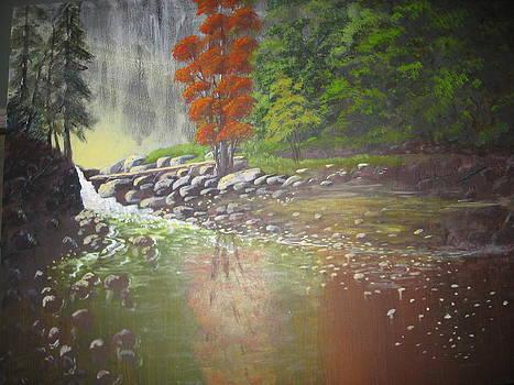Light in the Forest by Lloyd  Gardner