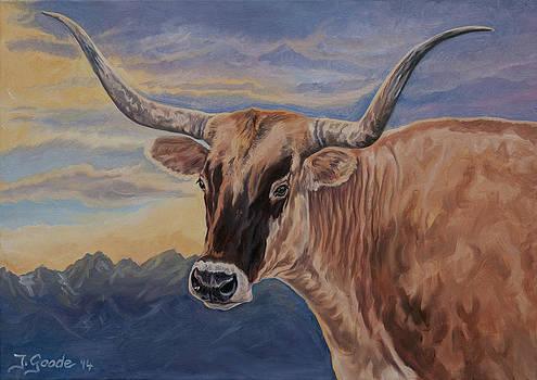 Longhorn  by Jana Goode