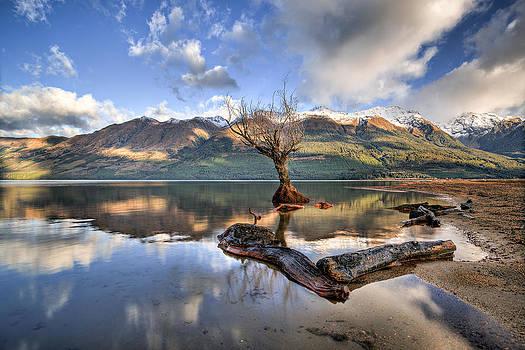 Lost World by Brad Grove