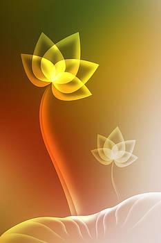 Lotus background. by Suphakit Wongsanit