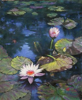 Meditation by Nancy Yang