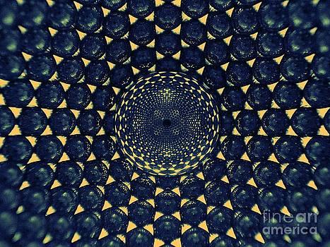 Magnetic Diamond by Mark Teeter