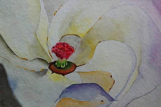 Magnolia  by Ria Sharon