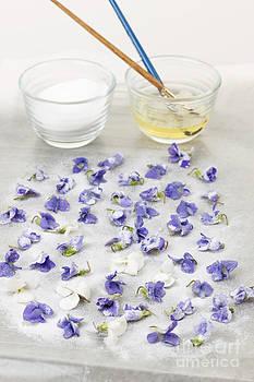 Elena Elisseeva - Making candied violets