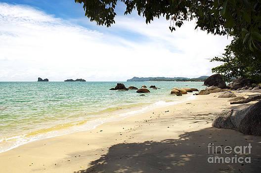 Tim Hester - Malaysian Beach
