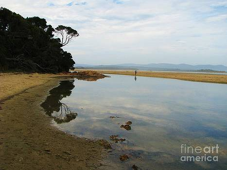 Mallacoota Inlet by Michele Penner