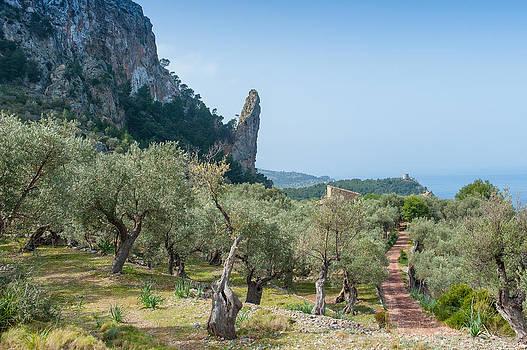 Gary Eason - Mallorca walk