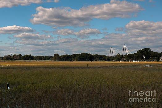 Dale Powell - Marsh Bridge View