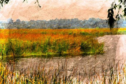 Marsh Land by Kathleen Struckle