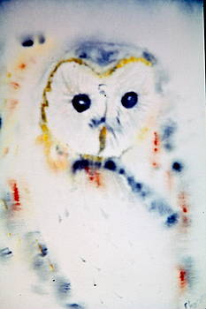 Martha's Owl by Phoenix Simpson