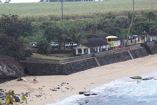 Maui Shoreline by Dick Willis